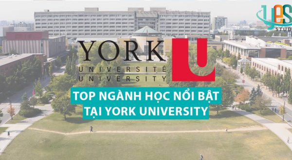du-hoc-canada-tai-york-university